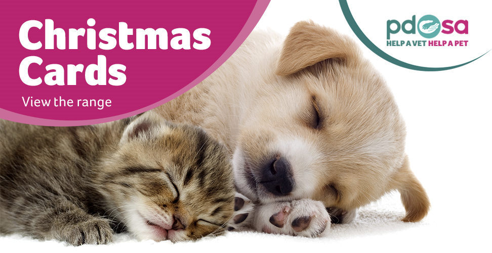 view our range of christmas cards