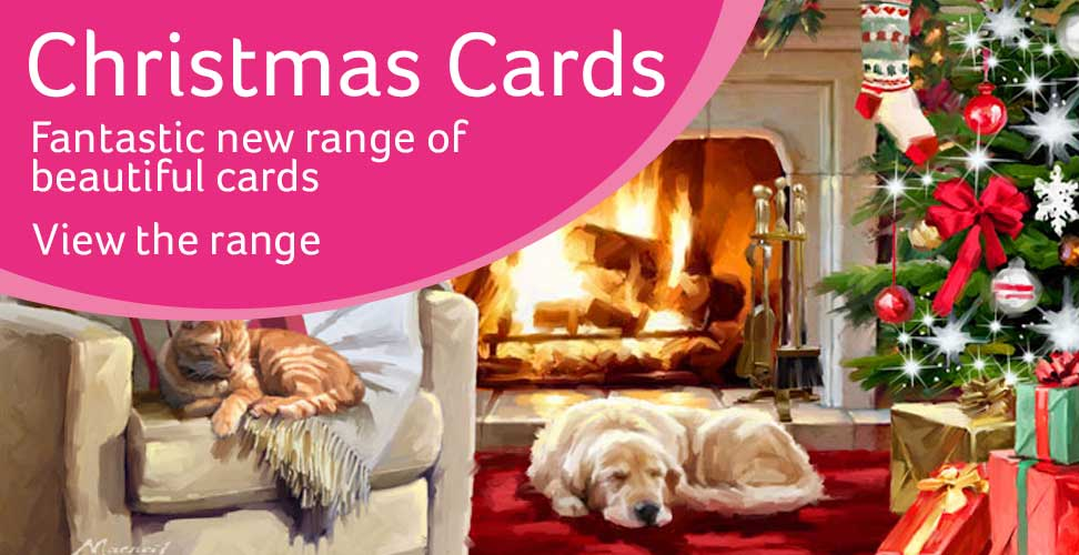 Fantastic New range of Beautiful cards